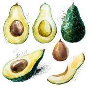 Watercolor avocado set Stock Illustration