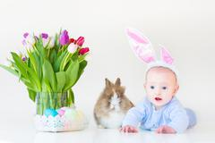Adorable funny baby boy with bunny ears playing with a real rabbit Stock Photos