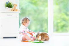 Adorable toddler girl wearing a white dress playing with a real bunny - stock photo