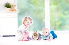 Cute little baby and his adorable toddler sister playing with a real bunny Stock Photos
