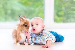 Adorable little baby playing with a funny real bunny on the floor - stock photo