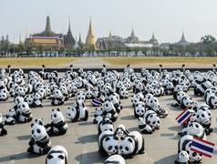 BANGKOK, THAILAND - MARCH 4, 2016: Exhibition of the 1,600 paper-mache panda - stock photo