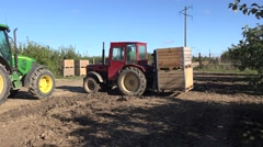 Tractors carry wooden boxes with fruits in autumn apple tree garden. 4K Stock Footage