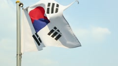 The South Korean Flag Stock Footage