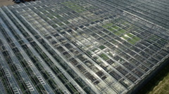 Agricultural industry greenhouse Stock Footage
