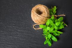 top view of beautiful bunch fresh green melissa officinalis tied twine and ya - stock photo