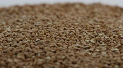 a pile of buckwheat Rotating - stock footage