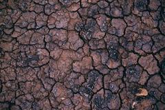 Soil drought, cracks in dry land Stock Photos