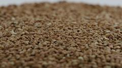Pile of buckwheat Rotating Stock Photos