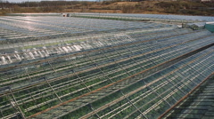 View on top of a huge glass roof of the greenhouse. - stock footage