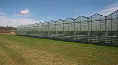 Industrial agricultural greenhouses Stock Footage