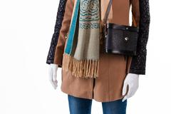 Handbag and scarf with fringe. Stock Photos