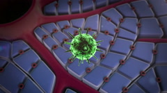 Virus penetrates the cell Stock Footage