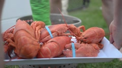 Lobster being put on a serving tray. Stock Footage