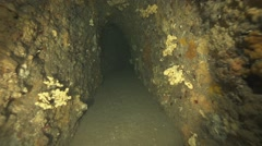 Underwater cave overgrown with coral and small fish Stock Footage