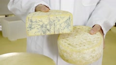 Production of cheese - stock footage