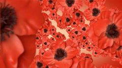 Red poppies. With an alpha matte. Stock Footage