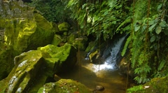 Natural waterfall tumbles playfully over rounded, mossy rocks under ferns Stock Footage