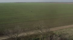 Single Person Goes Through the Field a Top View From Height Stock Footage