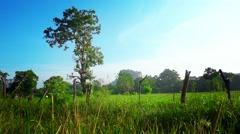 Sri Lanka Countryside Stock Footage