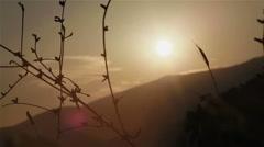 Legs of woman wearing fashion light silk dress fluttering in wind walk in nature Stock Footage