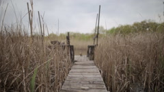 Long fishing bridge through the reeds on the lake Stock Footage