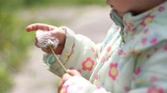 Child play with taraxacum Stock Footage