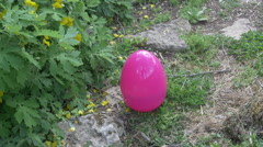 Giant easter egg in garden plants plant greenery 2 - stock footage