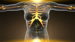 Science anatomy scan of human body in x-ray with glow skeleton bones Stock Footage