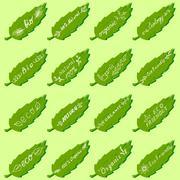 Vector icons - eco, eco friendly, bio, middle, ecology, organic. Stock Illustration