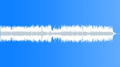 Swampy Joe (rhythm gtr) Stock Music