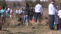 Students plant trees on Earth Day in Markham Canada v25 Stock Footage
