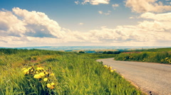 Country road on cloudy summer day - stock footage
