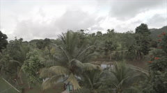 View of compound garden on mountain - stock footage