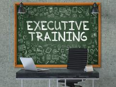 Executive Training - Hand Drawn on Green Chalkboard - stock illustration