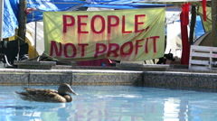Duck Swims Past Protest Movement Camp In The City Stock Footage