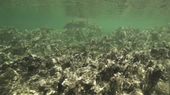 Underwater rocks in the sea spectacular illuminated by sunlight in slow motio Stock Footage