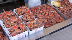 Pan across steamed crabs at a fish market. - stock footage