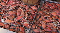 Pan across steamed crabs at a fish market. Stock Footage