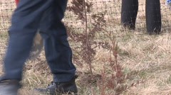 Students plant trees on Earth Day in Markham Canada v45 Stock Footage