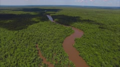Pearl River Swampland Aerial - stock footage