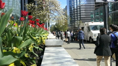 People Lining Up At The Food Truck In Downtown Vancouver Stock Footage