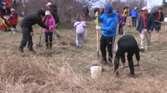 Students plant trees on Earth Day in Markham Canada v47 Stock Footage