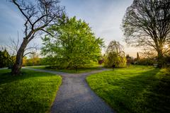 Walkway and trees at sunset, at Cylburn Arboretum, in Baltimore, Maryland. Stock Photos