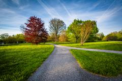 Walkway and trees at Cylburn Arboretum, in Baltimore, Maryland. Stock Photos