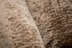 Brown Velvet Fabric Swatch - stock photo