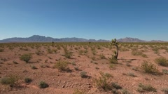 A desert in Nevada with Joshua trees Stock Footage