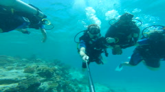 people diving under the warm cyan water. - stock footage