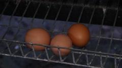 Eggs in hen basket - stock footage