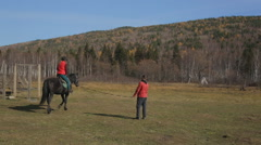 The equitation trainer is leading the horse in a circle with the beginner in the Stock Footage